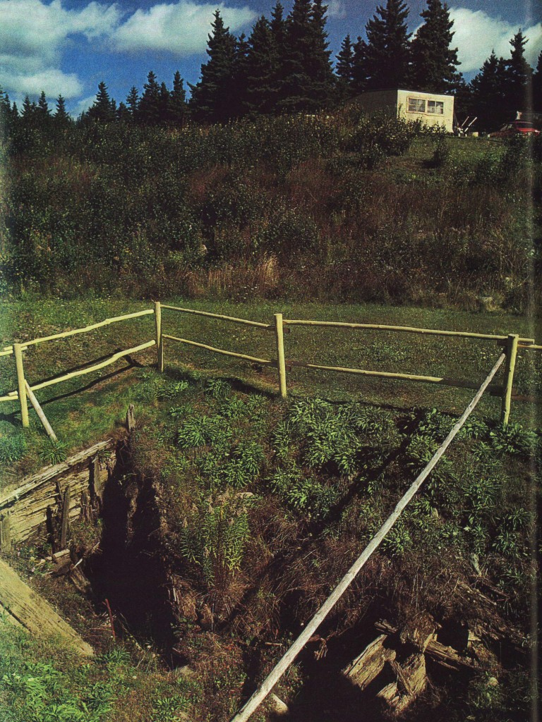 The Money Pit in 1988, from The Smithsonian Magazine article