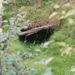Entrance to the original Money Pit shaft, Oak Island