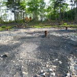Newly cleared woodland and drill holes on Oak Island