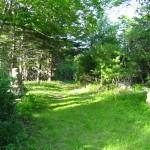 Driveway to Nolan's property, Oak Island